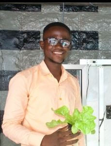 Soilless Cultivation