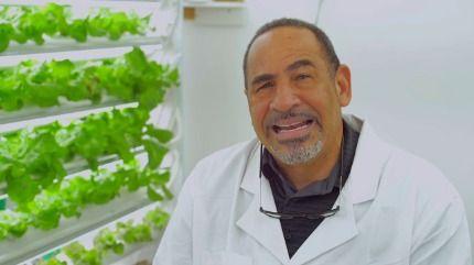 Beyond Organic: Indoor Farming in Residential Trinidad