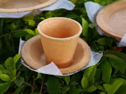 Edible Plates by Maquinnovación